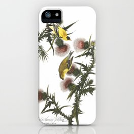 Goldfinch And Thistle iPhone Case