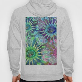 Abstract Passion Flower Burst Hoody