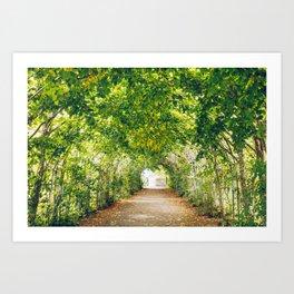 in green summer light Art Print
