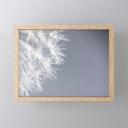 Sparkling dandelion with droplets - Flower water Framed Mini Art Print