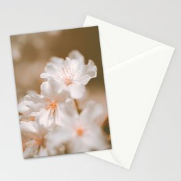 Delicate soft Blossoms | Nature, spring flower art Photography Stationery Cards