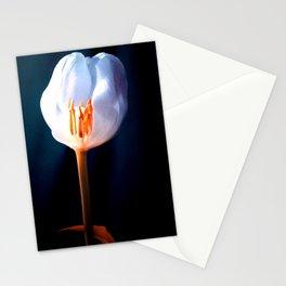 The Inner Light Stationery Cards