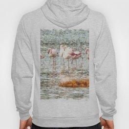 Six Flamingos A Wading Watercolor Hoody