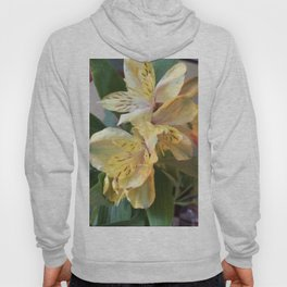 Yellow Lily Hoody
