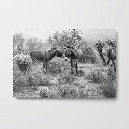 Donkey Courtship Metal Print