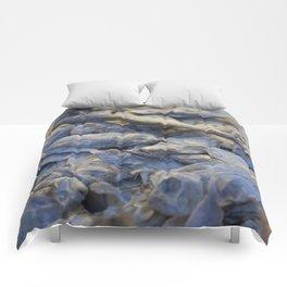 Dried Fish Comforters
