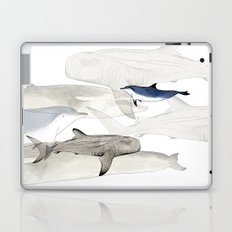 Life Aquatic Laptop & iPad Skin