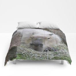adorable capybara Comforters