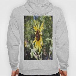 Sunflower Bee Hoody