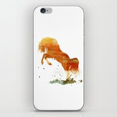 HORSES -Wild mountain pony iPhone & iPod Skin