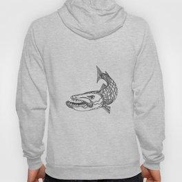 Barracuda Fish Doodle Art Hoody