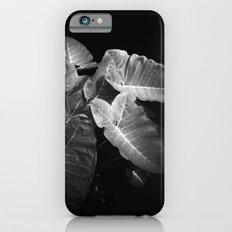Elephant Ears in the Dark iPhone 6s Slim Case