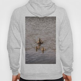 Mother Duck with Ducklings Hoody