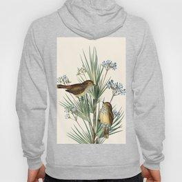 Little Birds and Flowers III Hoody