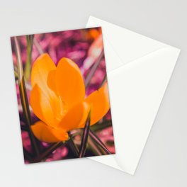 yellow crocus on pink Stationery Cards