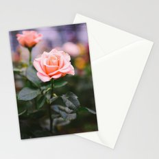 New Again Stationery Cards