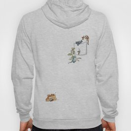 How to train your Dragon Hoody
