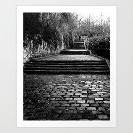 Cobblestone Stairs Art Print