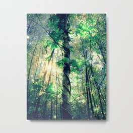 Forest of the Fairies Cool Sunrise Metal Print