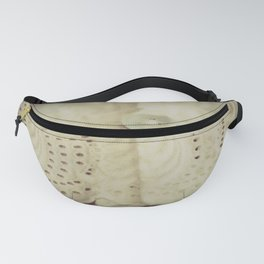 Lace ~ Embroidery  - JUSTART © Fanny Pack
