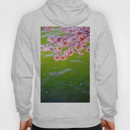 Japanese Cherry Blossom Petals In Green Zen Pond Hoody