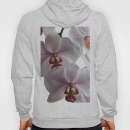 White orchids Hoody