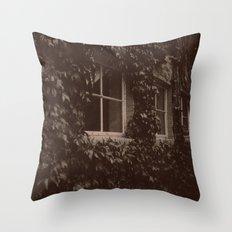 Secret Window Throw Pillow
