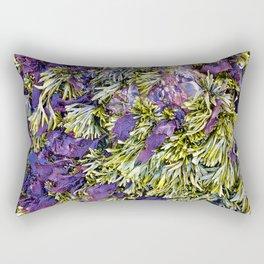 Bolinas Tide Pool Rectangular Pillow