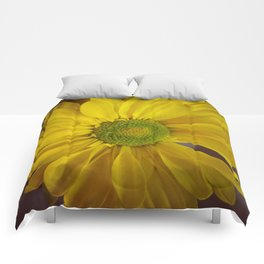 Sunny Yellow Flower Comforters