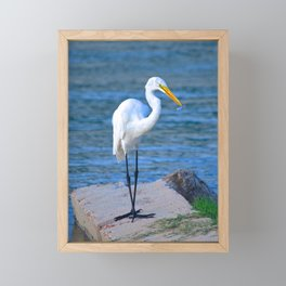 fishing at dusk Framed Mini Art Print