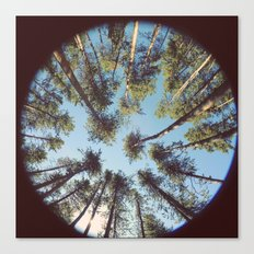 look up & GET LOST Canvas Print