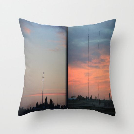 In The Plains (Planes) Field Throw Pillow