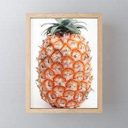 Azores pineapple Framed Mini Art Print