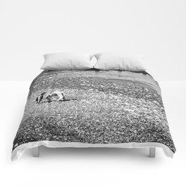 Treasure hunting Comforters