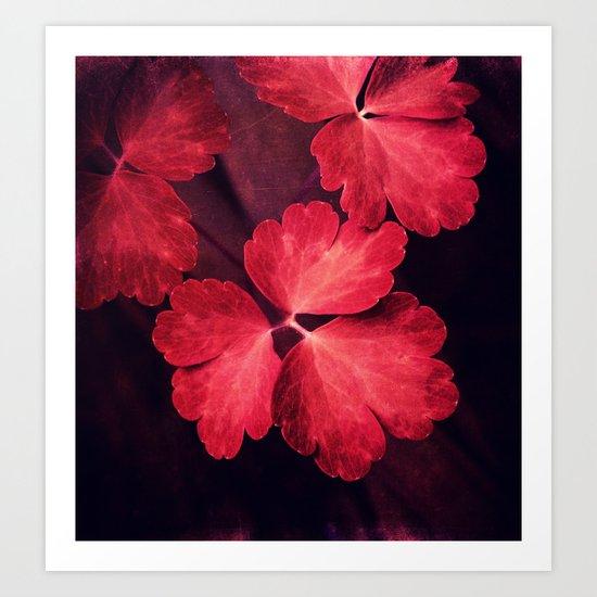 red meadow Art Print