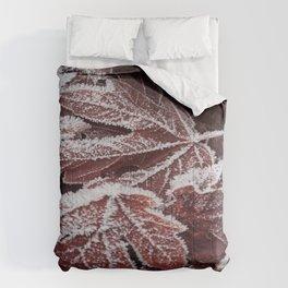 Frost 2 Comforters