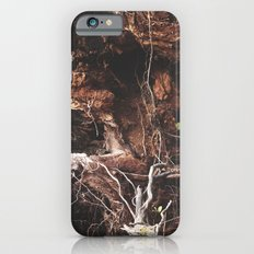 Root Of It All iPhone 6s Slim Case