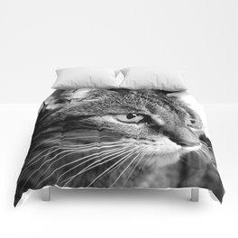 cat look Comforters