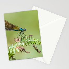 Blue metallic dragonfly Stationery Cards