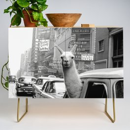 Llama Riding in Taxi, Black and White Vintage Print Credenza