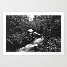 Vintgar Gorge, Bled, Slovenia. Art Print