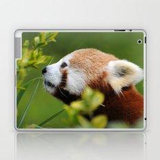 Red Panda 1 Laptop & iPad Skin