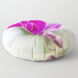 Orchid in Stand Out Pink Floor Pillow