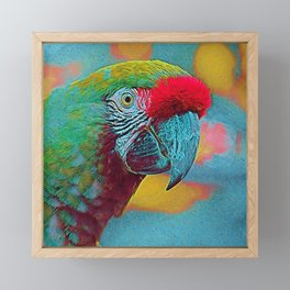 Popular Animals - Parrot Framed Mini Art Print