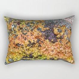 Rusty Sunset Stones Rectangular Pillow