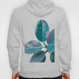 Ficus Elastica Iridescent Glam #1 #tropical #foliage #decor #art #society6 Hoody