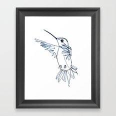 Hummingbird B Framed Art Print