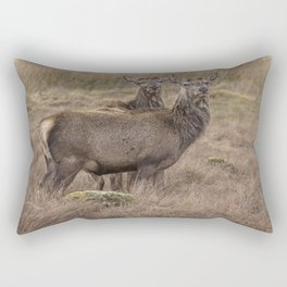 A pair of beautiful wild Stags in the Scottish highlands Rectangular Pillow