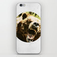 Ursus Arctos iPhone & iPod Skin