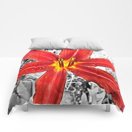 Red Day Lily in Black, White, and Red Comforters